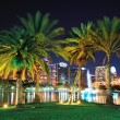 Orlando night scene — Stock Photo #11499757