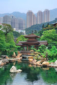 Hong Kong garden — Stock Photo