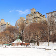 New York City Manhattan Central Park in winter — Stock Photo #12093398