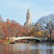 Central Park — Stock Photo #12094709