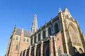 Grote Kerk (St. Bavokerk) in Haarlem, Netherlands — ストック写真