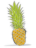 Pineapple vector drawing. — Stock Vector
