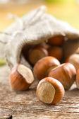 Hazelnuts (filbert) — Stock Photo