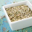 Stock Photo: Fennel seeds