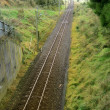 Railway tracks — Stock Photo #11050532