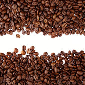 Coffee beans on plain background — Stock Photo