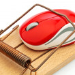 Computer mouse in mousetrap — Stock Photo #10836969