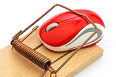 Computer mouse in mousetrap — Stock Photo