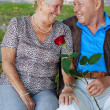 Older elderly couple in love. — Stock Photo #10986586