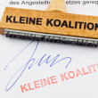 Stockfoto: Wood stamp on document: small coalition