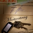 Stock Photo: Home keys and rental agreement