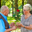 Stock Photo: Older elderly couple in love.