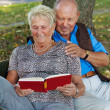 Older elderly couple in love. — Stock Photo