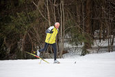 Senior cross-country skiing during the winter — Stock Photo