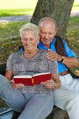 Older elderly couple in love. — Stock Photo