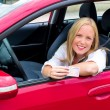 Stock Photo: Young woman holding a driving license