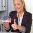 Real estate agent in her office — Stock Photo #11888602