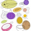 Exotic fruits - Stock Vector