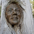 Maori carvings are often found in the parks of New Zealand — Stock Photo
