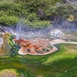 Stock Photo: Geysers and hot springs are located in many places around Rotorua