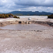 Stock Photo: Hot bubbling mud in many places in Rotorua