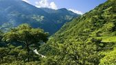 Green valley in the lower Himalayan peaks — Stock Photo