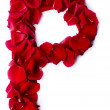Alphabet P made from red rose — Stock Photo #10859163