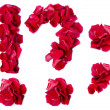 Stock Photo: Punctuation marks made from red rose