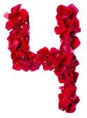 Número 4 de rosa roja — Foto de Stock