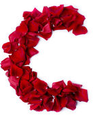Alphabet C made from red rose — Stock Photo