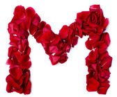 Alphabet M made from red rose — Stock Photo