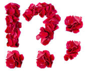 Punctuation marks made from red rose — Stock Photo