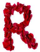 赤いバラから作られたアルファベット r — ストック写真
