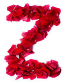 Alphabet Z made from red rose — Stock Photo