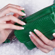 Female hands with manicure with handbag — Stock Photo #11271140