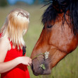 Girl and horse — Stock Photo #11314043