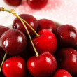 Stock Photo: Fresh Red Cherries