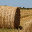 Stock Photo: Hay bales