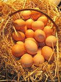 Basket of Eggs — Stock Photo