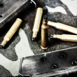 Bullets and magazine — Stock Photo #11359264