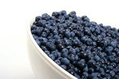 Bowl with blueberries — Stock Photo