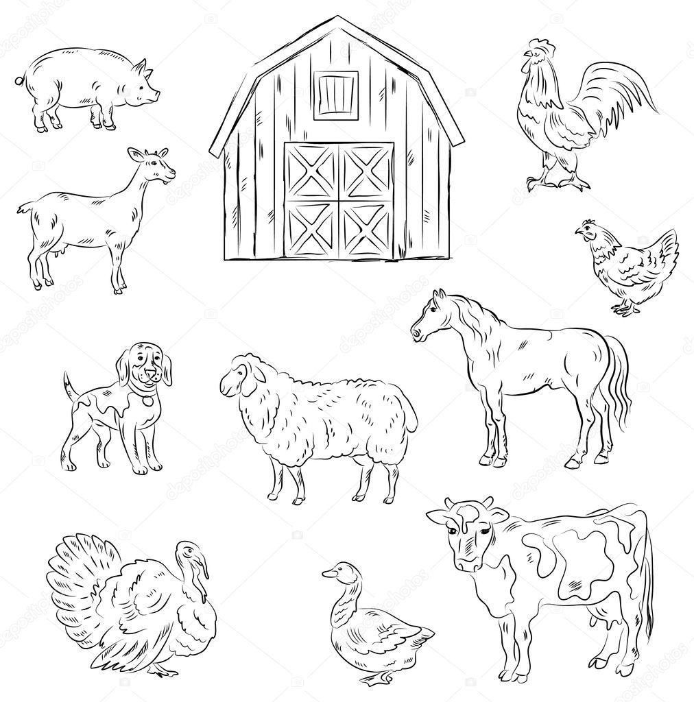 Line Art Farm Animals : Farm animals — stock vector igorij