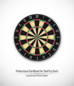 Professional Dartboard for Steel Tip Darts — 图库矢量图片