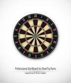 çelik uç dart için profesyonel dart tahtası — Stok Vektör