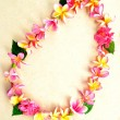 Pink plumeria lei - Stock Photo