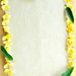 Frame of yellow plumeria — Stock Photo