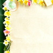 Spa supplies with plumeria on banana leaf — Stock Photo