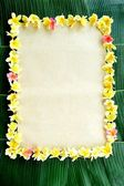 Frame of plumeria on banana leaf — Stock Photo