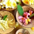 Tropical flowers with incense - Stock Photo