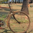 Old bicycle — Stock Photo